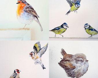 Bird Wall Decals, Garden Bird Wall Stickers, Nursery Bird Decals, Bird Home  Decor