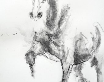 Graphite and Black Chalk Drawing of a Piaffe Horse, Horse Art, Animal, Modern Original Fine Art