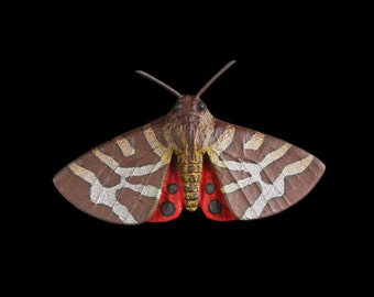 Tiger Moth Pin Brooch