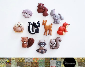 Woodland Animals Fridge Magnet Set