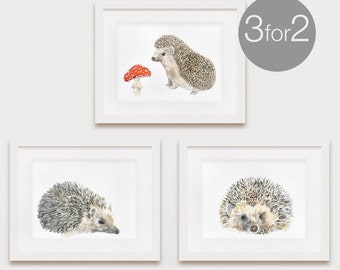 Hedgehogs, Nursery Woodland Art, Woodland Print Set, Woodland Decor Set, Woodland Art Set, Art Print Set, 3 for the price of 2