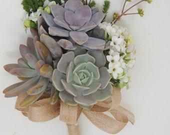Succulent bouquet-Cecilia