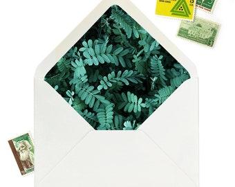 Forest Fern DIY Envelope Liners