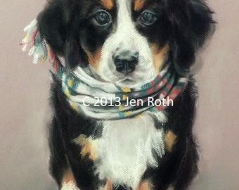 "BERNESE MOUNTAIN PUPPY ""Comfy Bernese Puppy"" - Dog Print of original pastel art home decor animal"