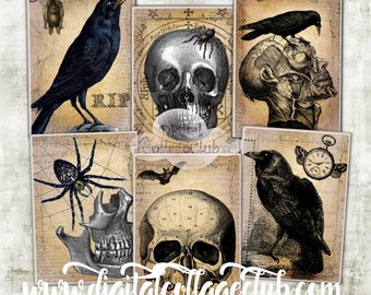 Creepy Halloween Raven Digital Collage Sheet Images for Jewelry Holders Card making Atc Scrapbooking Halloween Party Themed