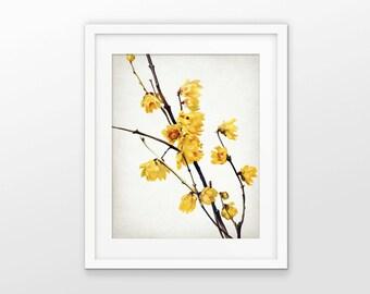 Yellow flower art etsy yellow flowers art print yellow flower decor tree blossom flower print single mightylinksfo Gallery