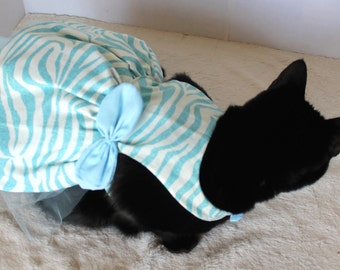 Zebra Dress for Cat in Blue