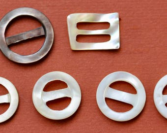 Six Small Shell Buckles