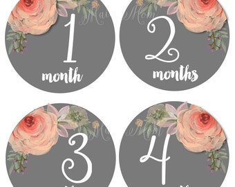 Baby Girl Monthly Stickers, Month Baby Stickers, Milestone Stickers, Elegant Watercolor Floral Bodysuit  Nursery Decor