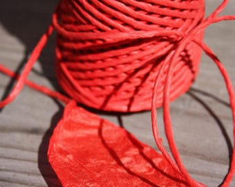 HOT Red Paper Cord= 1 Spool= 110 Yards= 100 Meters- Christmas Decorations- Wedding Decoration- Macrame Cord- Gift Wrapping Cord- Kraft Paper
