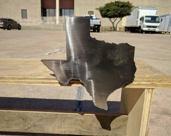 Stainless Steel Texas Hitch Cover