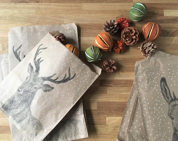 Animal Christmas Paper Bags x 10, perfect for little treats and favours