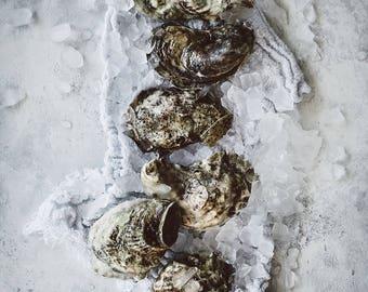 Food Photography, Still Life, Food Art, Home Decor, Oysters, Restaurant Decor, Wall Art, Kitchen Decor, Gift Ideas, Housewarming Gifts
