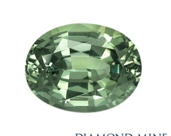 1.34 Carat Green Sapphire, Oval cut Sapphire, Loose Sapphire Gemstone, Green Gemstone, Non Heated Real Sapphire