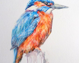Kingfisher painting, watercolor painting, realistic painting, traditional painting, kingfisher drawing, inktense