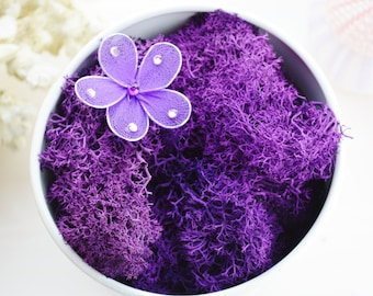 Reindeer Lichen Moss Preserved ~ Purple Moss ~ Colored Moss ~ Dyed Reindeer Lichen Moss ~ Now available in 2 different sizes at checkout