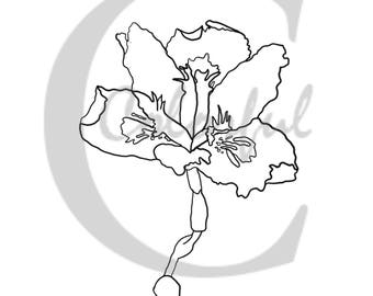 Printable Flower Coloring Page; Adult Flower Coloring Page