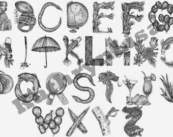 Pencil Illustrated Alphabet Print - Typography