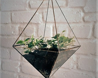 Hanging glass terrarium. Space saving. Octahedron. Geometric. Hanging garden. Gift for Her. Air plant. Stained glass. Valentin's Day
