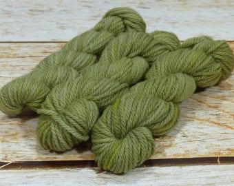 "Wee Llineage Worsted "" Lichen "" Semisolid Hand Dyed Yarn 20 g / 50 yd"