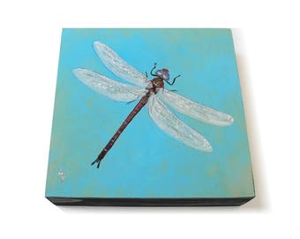 Dragonfly painting 6x6 - dragon fly painting - mayfly art - blue green pond - spring dragonfly - insect art - original painting square