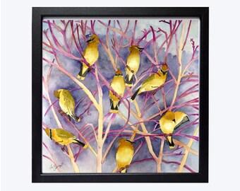 Oiseaux estampes, reproductions de la Nature, chant oiseau, cèdre jaseurs, oiseau illustrations un essaim, Covey A, d'oiseaux, WatercolorByMuren