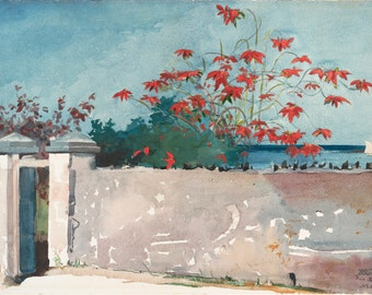 A Wall, Nassau by Winslow Homer Home Decor Wall Decor Giclee Art Print Poster A4 A3 A2 Large Print FLAT RATE SHIPPING