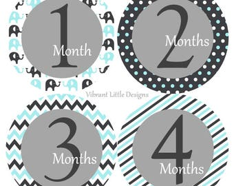 Monthly Baby Stickers Boy, Milestone Stickers, Month Stickers, Baby Month Stickers, Baby Stickers, Elephants #51
