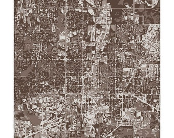 Gainesville Cityscape Print / Florida Wall Art Poster / University of Florida Gators City Map / 8x10 Grad Gift / Choose your color