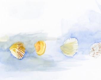 Shells painting