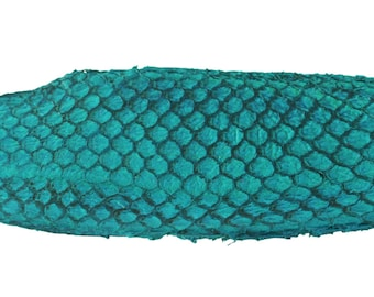 TURQUOISE Exotic Glossy Eco Friendly, CHROME free, real Tilapia Fish Leather Skin from Go Fish Leather. FLGTQ. Sold by each skin.