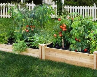 Garden Plant Sampler, 6 Plants