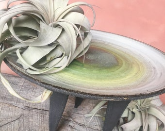 Handmade Gradient White to Moss Green Tripod Stand for Large Air Plants | Centerpiece or Candle Stand