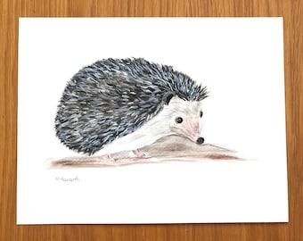 Hedgehog art, Original watercolour, original painting, hedgehog artwork, woodland animals art, nursery art, hedgehog illustration, Signed