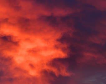 Farm,Sunrise,Red,Pink,Sky,Horse Farm