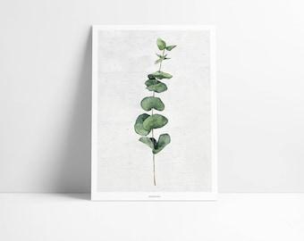 Poster / plant No.. 1