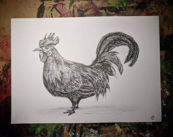 A2 Pencil / Pen Drawing / Original Art - The Rooster