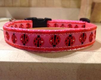Lady Luck Small and Medium Dog Collar