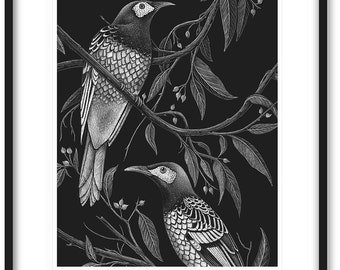 HONEYEATER PRINT - Regent honeyeaters, birds, limited edition print 8x10