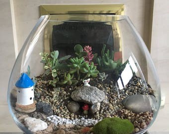 Handmade succulent terrarium