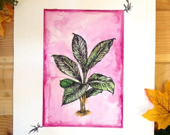 Original watercolour and ink plant illustration.