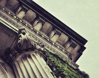 Architecture Photography, Urban Art, Column and Ivy, City Art, Springfield MA, Fine Art Photography 5x7