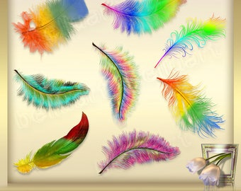 8 Feathers Overlays Vol. 5 - Colorful feathers - digital clip art  - Foto Overlays Photography-Overlays - Instant Download - PNG Files