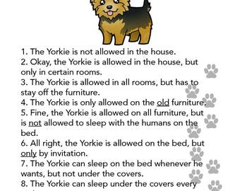 Yorkie's House Rules Photo