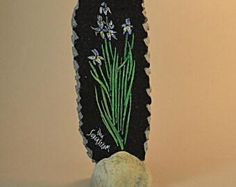 Wild Iris flowers on black granite tile