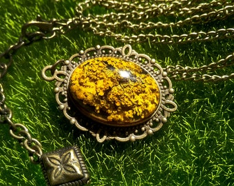 Yellow lichen resin pendant Dried lichen necklace Real plant jewelry Woodland Botanical jewelry Nature resin pendant Bronze vintage necklace