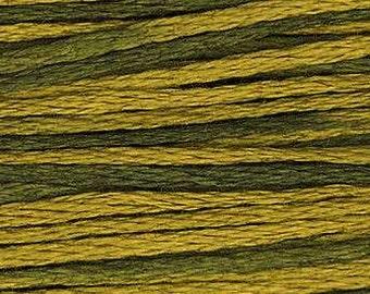 2201 Moss - Weeks Dye Works 6 Strand Floss
