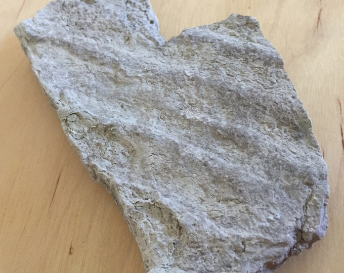 Sedimentary Ripple Mark Specimen