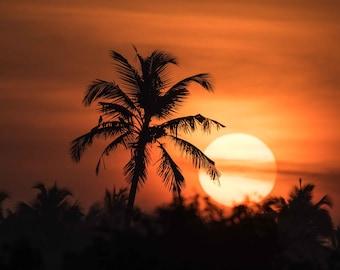 landscape photography Tropical sunrise