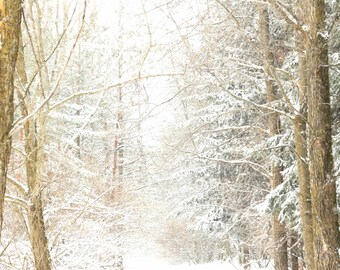 SNOW PATH White Fantasy Snow Wall Decor Brown Gold Trees Country Bright Rustic
